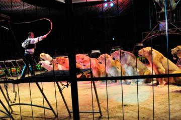 cirques.jpg